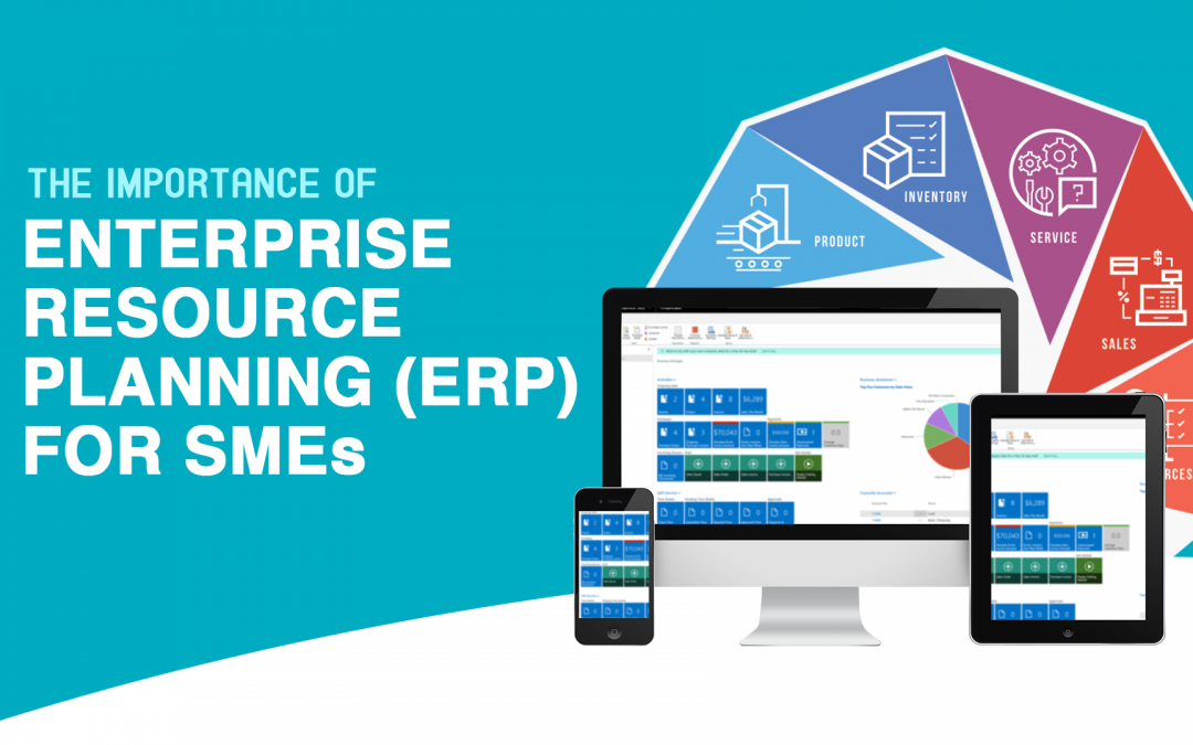 The Importance of Enterprise Resource Planning (ERP) for SMEs